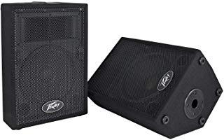 Peavey DJ 2-Way 100 Watt PA Speaker System